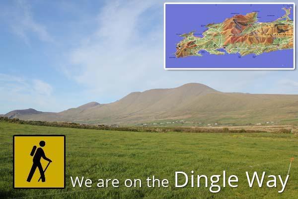 Dingle B&B on The Dingle Way
